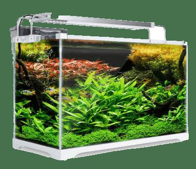 CO2 do akvária oxid uhličitý do akvária plnění CO2 2kg lahve